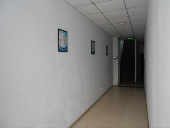 学校走廊展示画